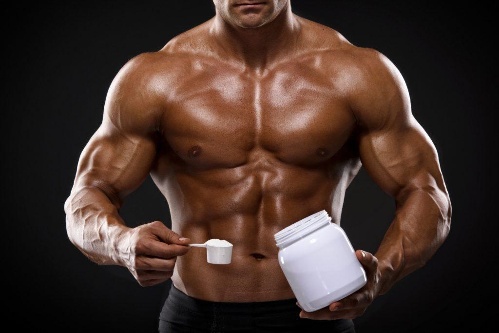créatine monohydrate musculation